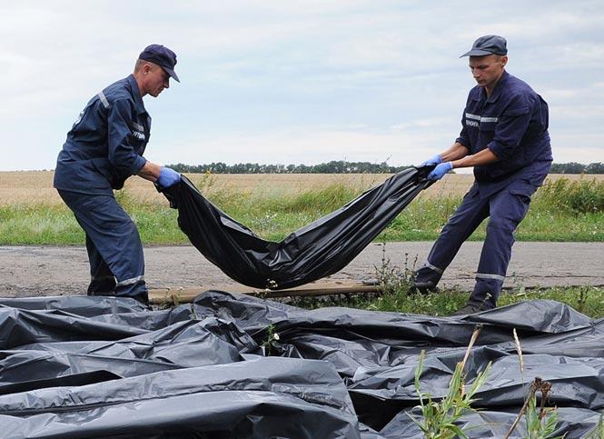 Phát hiện thêm một số phần thi thể nạn nhân máy bay MH17 5