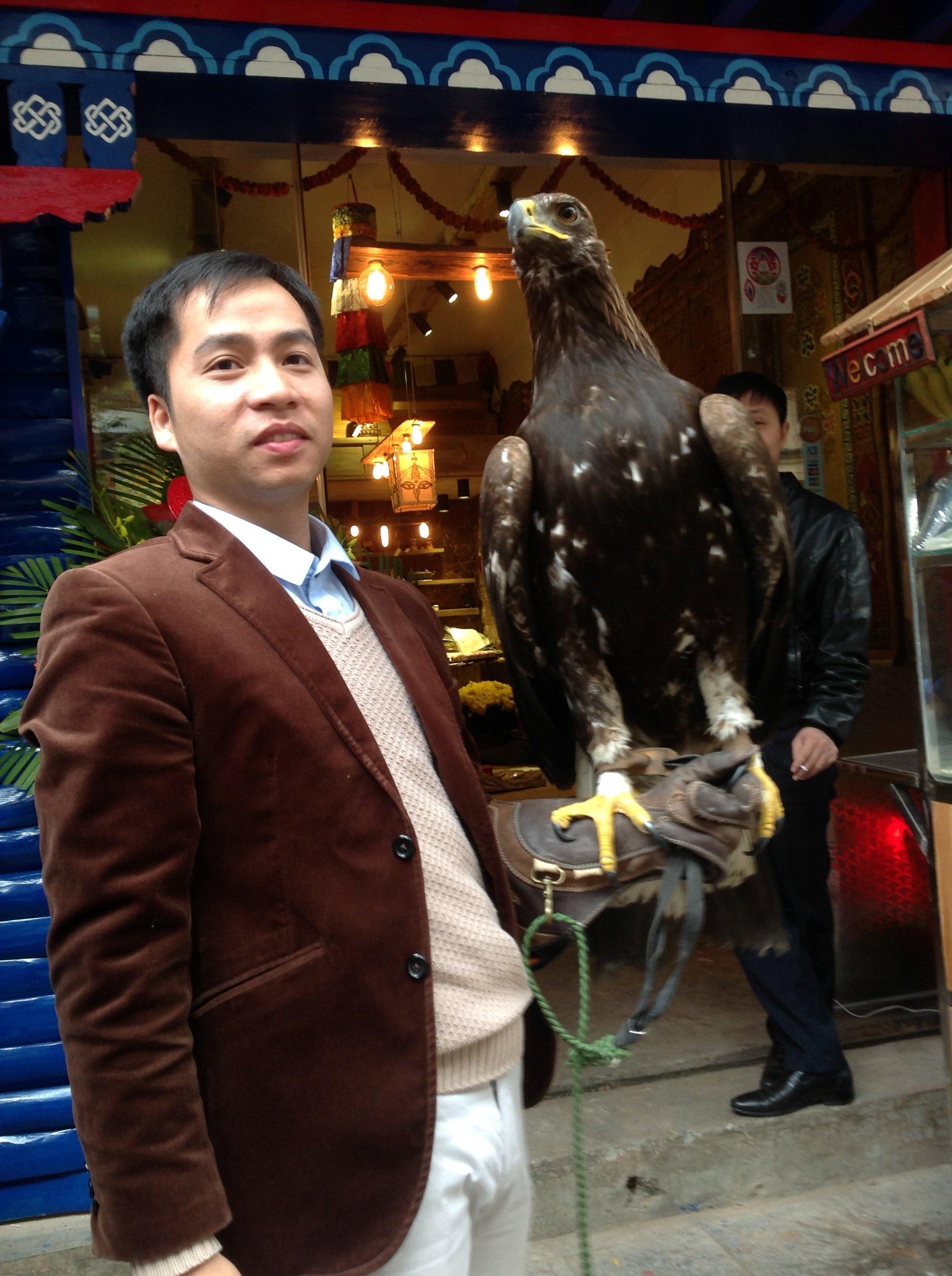 Hình ảnh Thú chơi đại bàng Mông Cổ giữa Hà Nội số 3