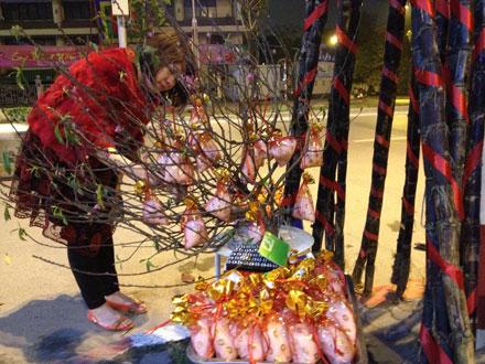 Pháo hoa rực rỡ chào xuân Ất Mùi 2015 19
