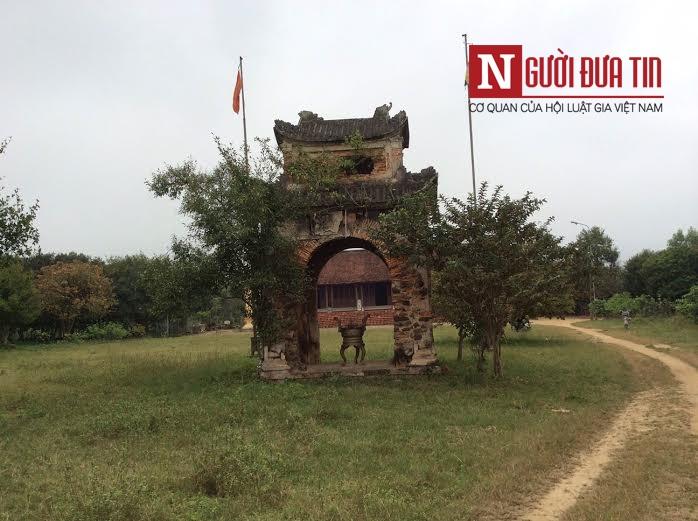 Phát hiện loài cây hiếm tại chùa Hương Tích 7
