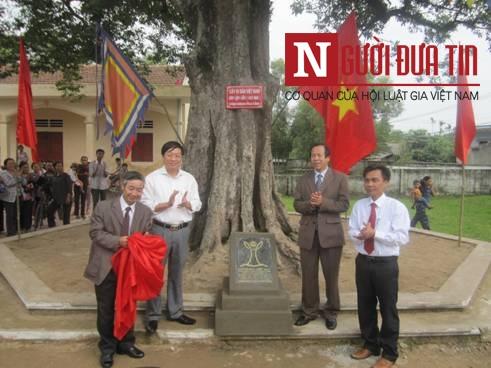 Phát hiện loài cây hiếm tại chùa Hương Tích 9