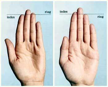 Tiết lộ khả năng của đàn ông qua chiều dài ngón tay 3