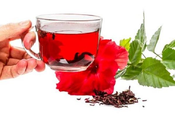 Công dụng chữa bệnh của hoa dâm bụt 4