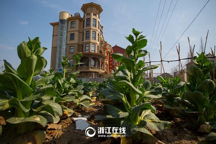 Đại gia nông dân xây biệt thự có thang máy ngoài trời để ngắm cảnh 11
