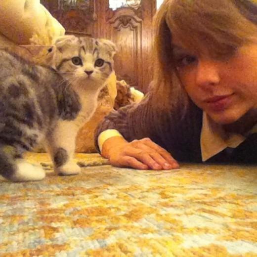 Taylor Swift khoe đôi chân 850 tỷ bị băng bó vì mèo cưng 12