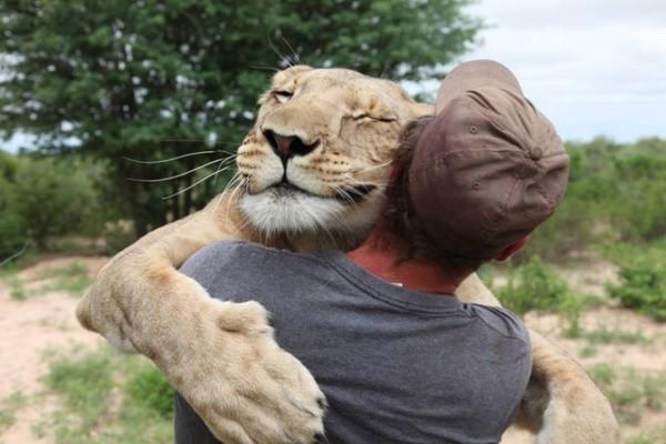 Cuộc sống của người đàn ông ôm sư tử cái mỗi ngày 5