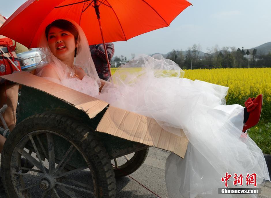 Đám cưới có một không hai, chú rể bán nude kéo xe bò đón dâu 6