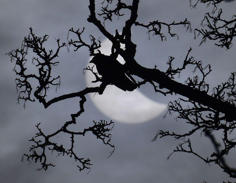 Ngắm vẻ đẹp huyền ảo của nhật thực toàn phần từ khắp nơi trên thế giới 7