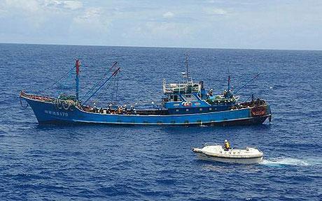 1 thuyền trưởng Trung Quốc bị Nhật Bản phạt nặng vì trộm san hô 5