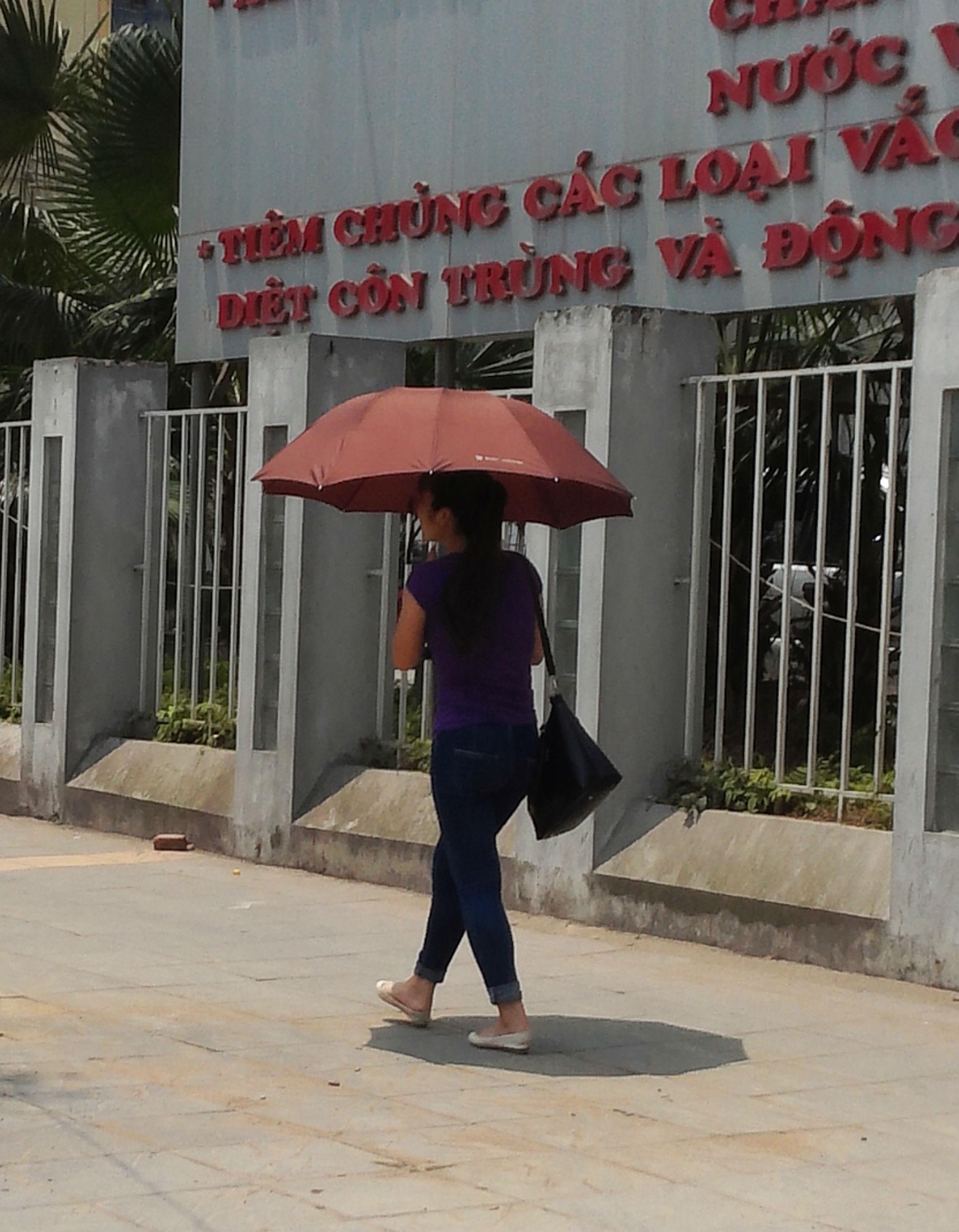 Hà Nội: Khốn khổ nắng nóng đường phố 'trơ bóng' cây xanh 10