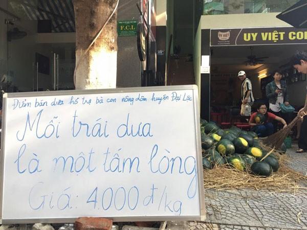 Dân mạng chung tay kêu gọi mua dưa hấu giúp nông dân Quảng Nam 1