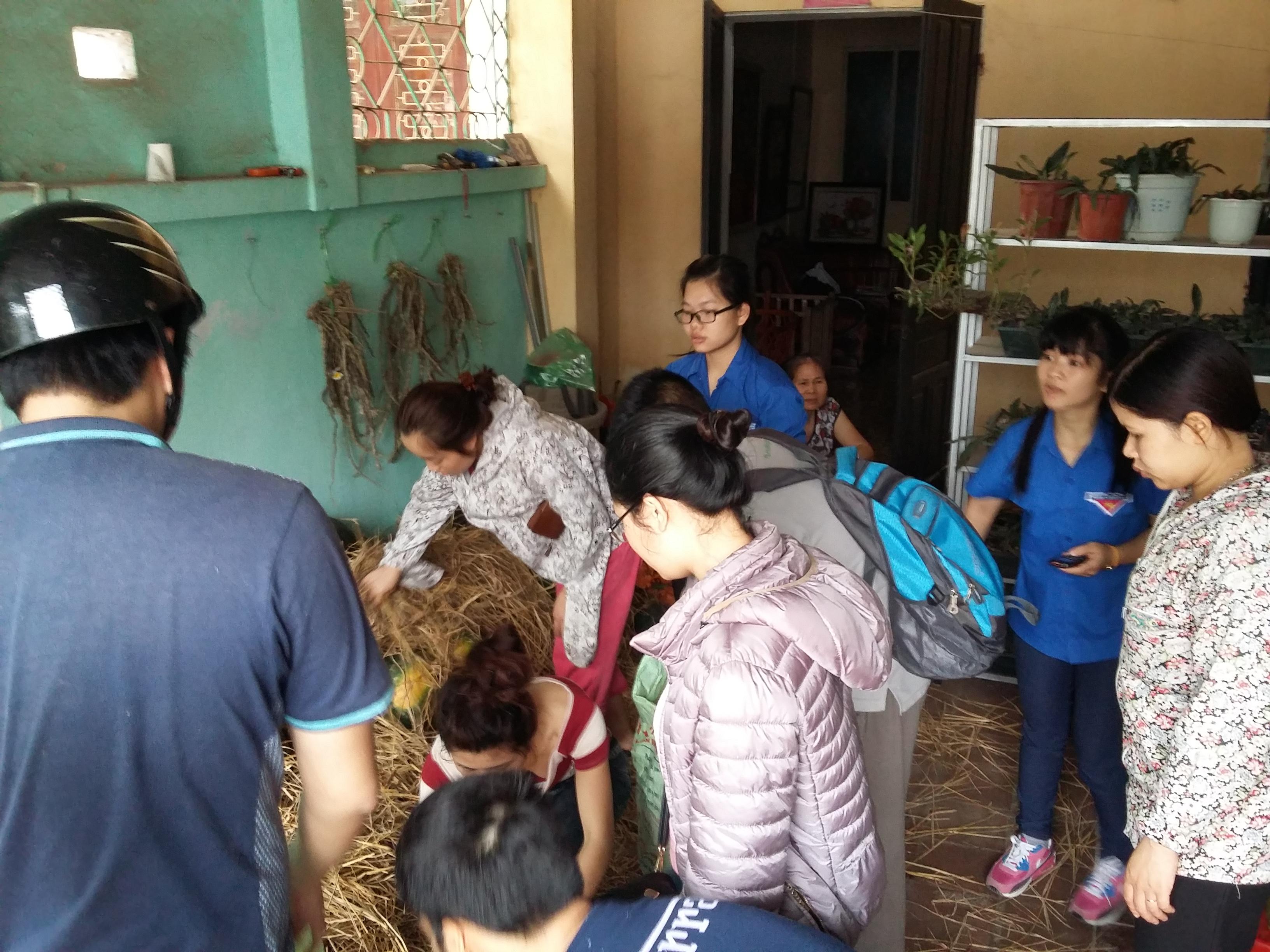 Dân mạng chung tay kêu gọi mua dưa hấu giúp nông dân Quảng Nam 3