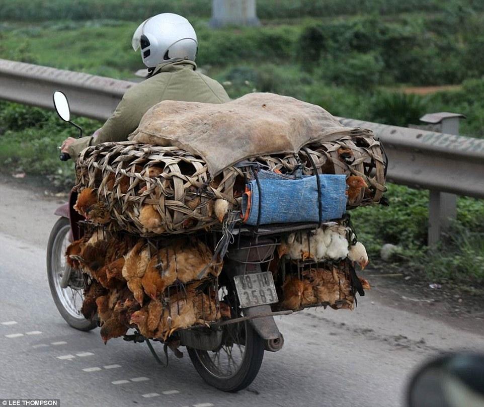 Cách sử dụng xe máy của Việt Nam khiến người nước ngoài sửng sốt 1