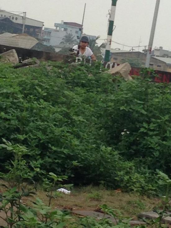 Bật cười khi CSGT núp vườn chuối, ngọn cây, nóc nhà để bắn tốc độ 3