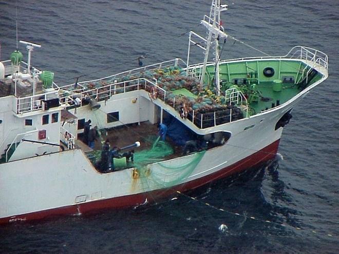 Tàu tuần tra Triều Tiên trôi vào biển Hàn Quốc 1