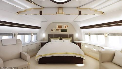 Bộ nội thất 13 nghìn tỉ trong máy bay riêng của đại gia bí ẩn 4