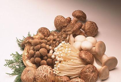 Cần lưu ý trước khi chế biến nấm trong bữa ăn hàng ngày