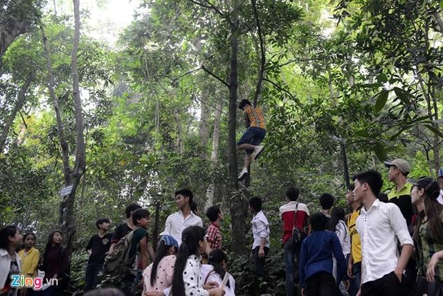 Hàng triệu người chen lấn, xẻ rừng, leo trèo vào dự lễ Đền Hùng 6