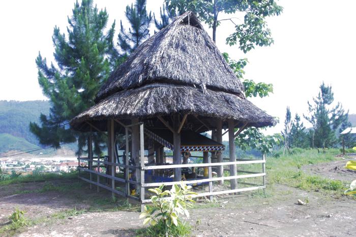 Ngôi làng 'nhà tranh vách gỗ' trị giá gần 4 tỷ đồng  10