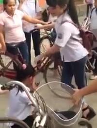Xôn xao clip nữ sinh bắt bạn quỳ , dúi đầu ngã ngửa giữa đường 1