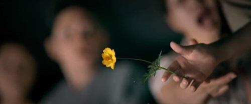 Tôi thấy hoa vàng trên cỏ xanh và những hình ảnh gợi nhớ tuổi thơ 16