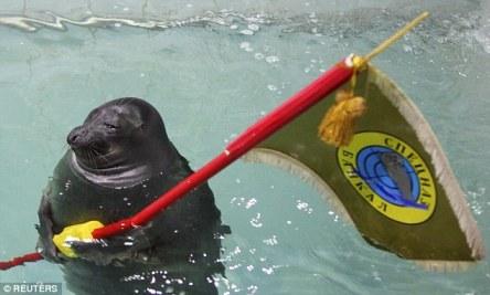 Video: Hải cẩu bắn súng nước, giương cờ mừng Ngày Chiến thắng 2