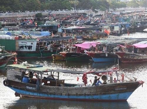 Trung Quốc lại ngang ngược cấm đánh bắt cá ở Biển Đông 1