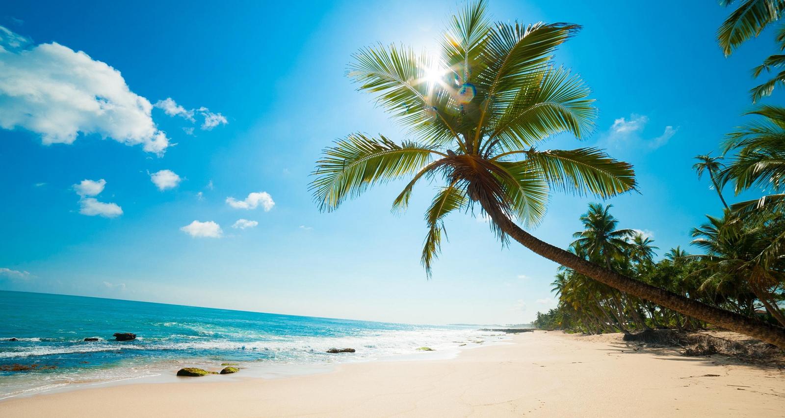 10 bãi biển đẹp nhất Việt Nam cho bạn yêu du lịch biển 13