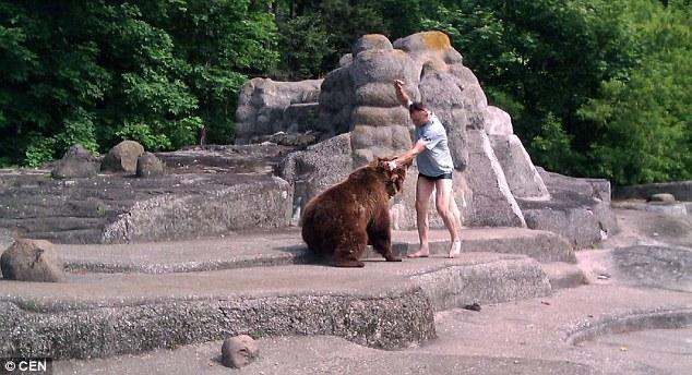 Thót tim người đàn ông liều mạng leo vào chuồng trêu gấu dữ 3