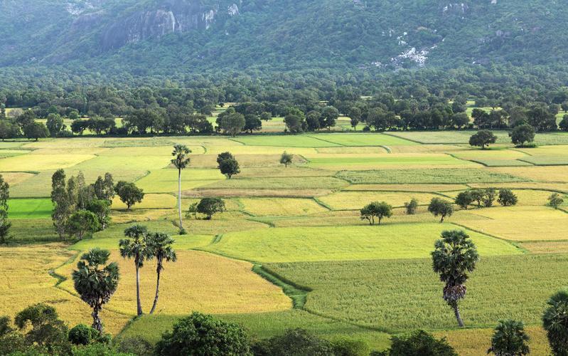 Cẩm nang du lịch An Giang – miền sông nước Tây Nam Bộ 6