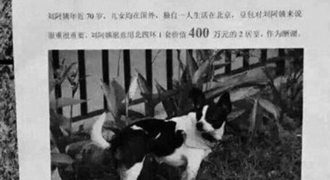 Đại gia tặng nhà 14 tỉ cho người tìm thấy chó cưng bị lạc 1