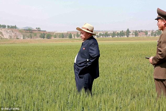 Kim Jong-un đội mũ thời trang đi thăm lúa 1