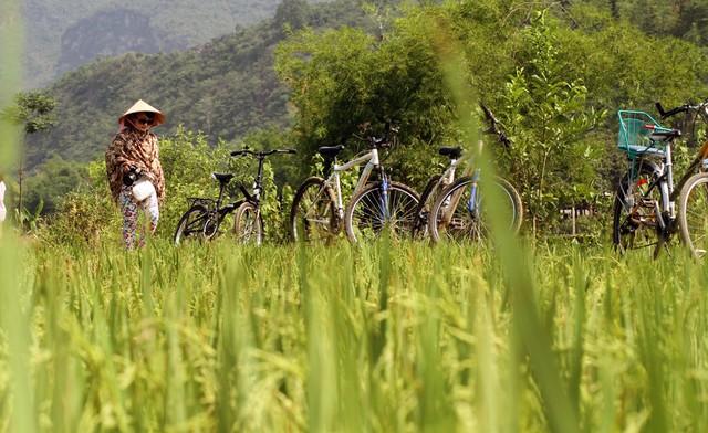 Mai Châu Ecolodge – Khu du lịch xanh giữa thiên nhiên tuyệt đẹp 9