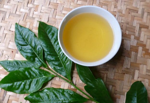 Cách chống nắng bằng trà xanh độc đáo với hiệu quả bất ngờ 3