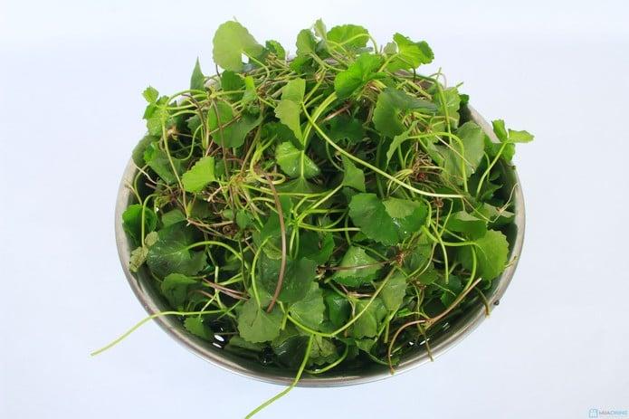 Cách trị mụn thâm bằng rau má đơn giản và hiệu quả cho phụ nữ 8