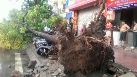 Hà Nội: Đường phố ngổn ngang sau cơn giông lớn dị thường 12