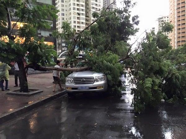 Hà Nội: Đường phố ngổn ngang sau cơn giông lớn dị thường 3