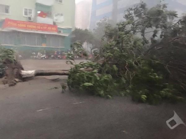 Hà Nội: Đường phố ngổn ngang sau cơn giông lớn dị thường 5