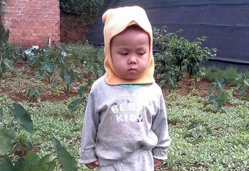 Bé trai 3 tuổi mất tích bí ẩn trong chính nhà mình 1