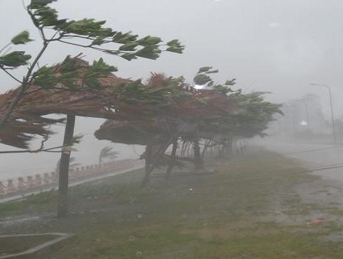 Tin bão số 1: Bão số 1 suy yếu thành áp thấp, mưa lớn trên diện rộng 1
