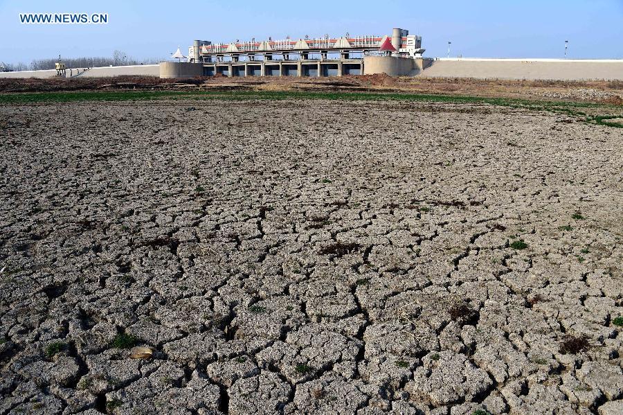 Hạn hán biến hồ nước thành cánh đồng hoang ở Trung Quốc 6
