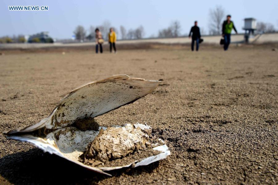 Hạn hán biến hồ nước thành cánh đồng hoang ở Trung Quốc 5