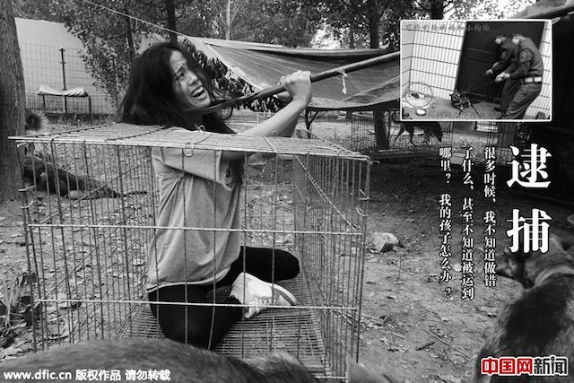 Chùm ảnh vũ công hóa thân thành chó bị bạo hành đầy ý nghĩa 3