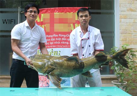 40 triệu đồng cho một con cá lăng 1