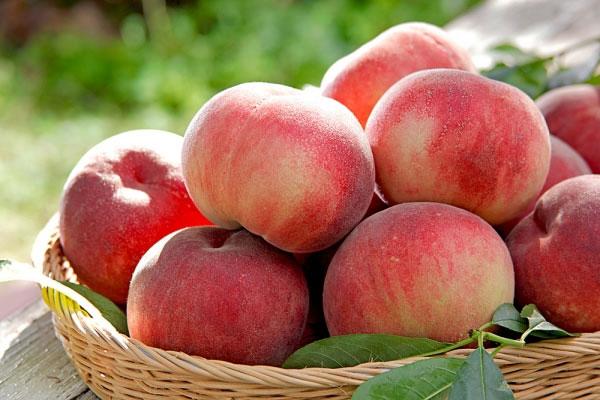 Điểm mặt những trái cây ăn nhiều sẽ không tốt 4
