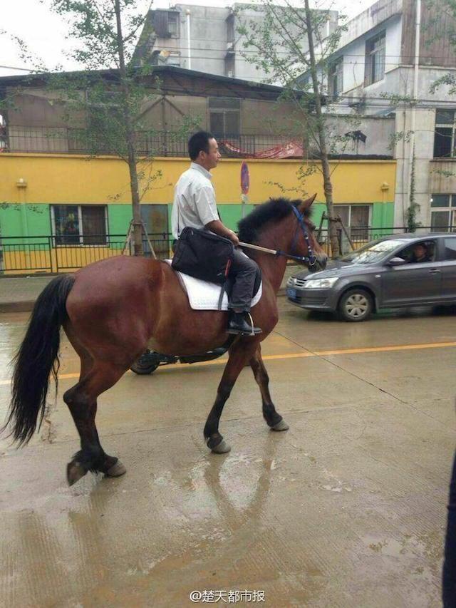 Chán cảnh tắc đường, người đàn ông cưỡi ngựa đi làm 3
