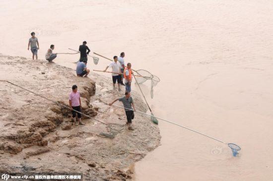 Cận cảnh hàng nghìn người tụ tập bắt cá khi đập xả lũ 5