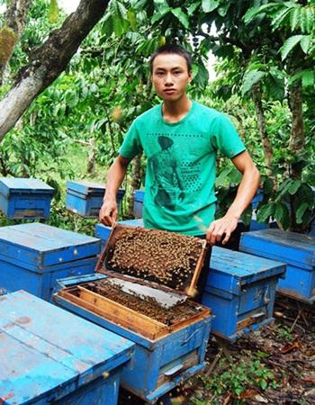 Hình ảnh Nông dân 9x thu hơn trăm triệu từ nuôi ong, thu gom phế thải số 2
