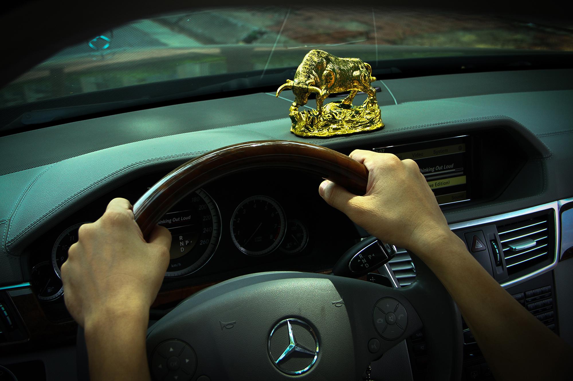 Hình ảnh Quý linh xe hơi – 12 con giáp: Bình an & may mắn số 2