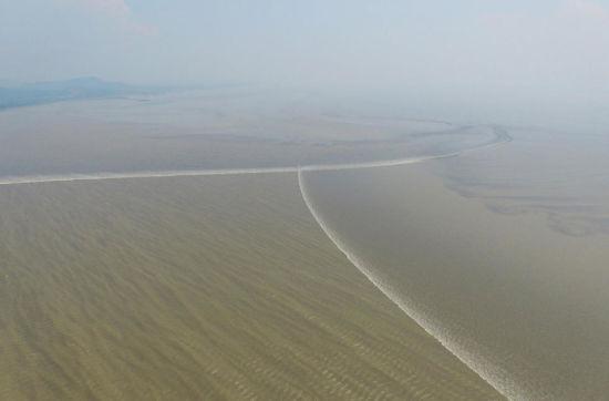 Hàng nghìn người đổ xô tới xem thủy triều cực hiếm trên sông Tiền Đường 1